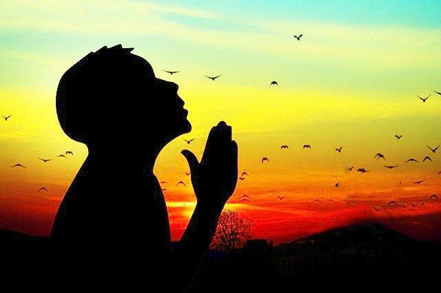 Mercy, रहमत, सेवा, sewa